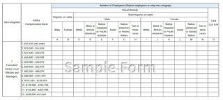 Online Filing System Sample Form